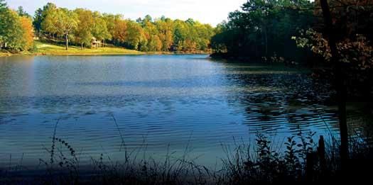 RCC_lake