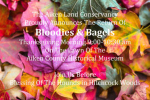 Bloodies & Bagels SAVE THE DATE